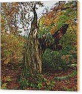 The Samson Wood Print