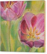Tulipes Wood Print