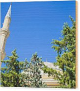 Turkish Mosque Wood Print