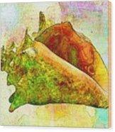 Underwater. Sea Shells Wood Print