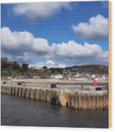 View From The Cobb - Lyme Regis Wood Print