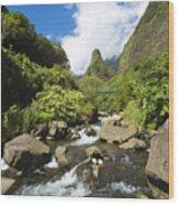 View Of Iao Needle Wood Print
