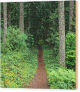 View Of Oregon Wood Print