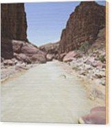 Wadi Zered Western Jordan Wood Print