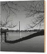 Washington Memorial Wood Print