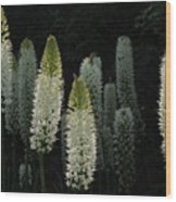 White Blooms Wood Print
