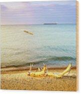 Whitefish Point, Michigan Wood Print