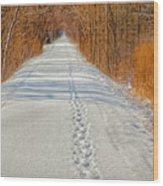 Winter On Macomb Orchard Trail Wood Print by LeeAnn McLaneGoetz McLaneGoetzStudioLLCcom