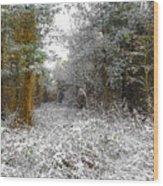 Winter Time Wood Print