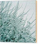Winter Wonderland In Switzerland Wood Print
