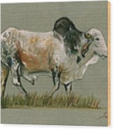 Zebu Cattle Art Painting Wood Print