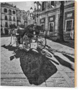 Seville Sevilla Andalucia Spain Wood Print