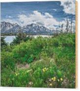 The White Pass And Yukon Route On Train Passing Through Vast Lan Wood Print
