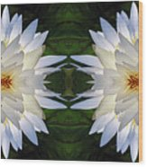 White Lotus Mandala Wood Print