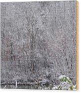 3003-snowscape Wood Print