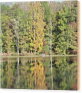 3007-fall Waterscape Wood Print