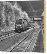 301 Ice Train Wood Print