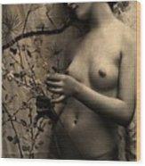 Digital Ode To Vintage Nude By Mb Wood Print
