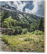The White Pass And Yukon Route On Train Passing Through Vast Lan Wood Print