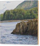 Alaska_00032 Wood Print