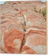 Colorful Sandstone In Valley Of Fire Wood Print