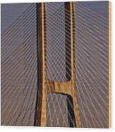 Lisbon Portugal Wood Print
