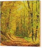 Nature Landscape Pictures Wood Print