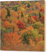 North Carolina Fall Colors Wood Print