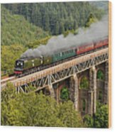 34067 Tangmere Crossing St Pinnock Viaduct. Wood Print