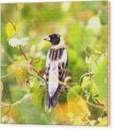 3457 - Bobolink Wood Print