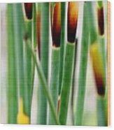 Bamboo Grass Wood Print