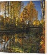 Cool Landscape Wood Print