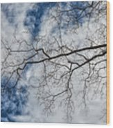 Trees Sky And Clouds Wood Print