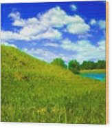 Pictures Of Oil Paintings Landscape Wood Print