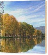 S Landscape Wood Print