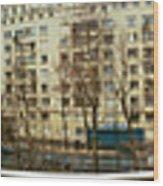 360 Panoramic Photograph Of Paris Wood Print