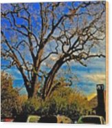 365 012716 Ancient Valley Oak And Parking Wood Print