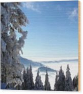 Picture Of Landscape Wood Print
