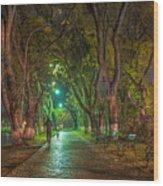 Uzhgorod Wood Print