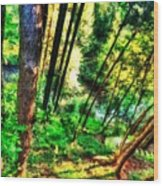 Landscape Image Wood Print