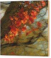 3927 Wood Print