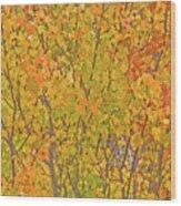 3983 Autumn Pleasure Wood Print