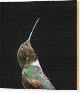3990 - Ruby-throated Hummingbird Wood Print
