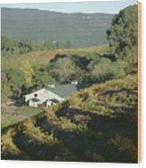 3b6348 Benzinger Family Winery Wood Print