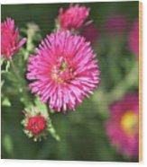 3d Flower Wood Print