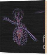 3d Rendering Of Human Circulatory Wood Print