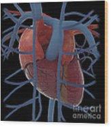 3d Rendering Of Human Heart Wood Print