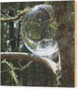 4-22-16--8699 Don't Drop The Crystal Ball, Crystal Ball Photography  Wood Print