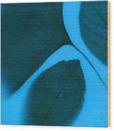 3 Leaves Series Wood Print