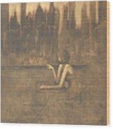 4-30 Am Wood Print